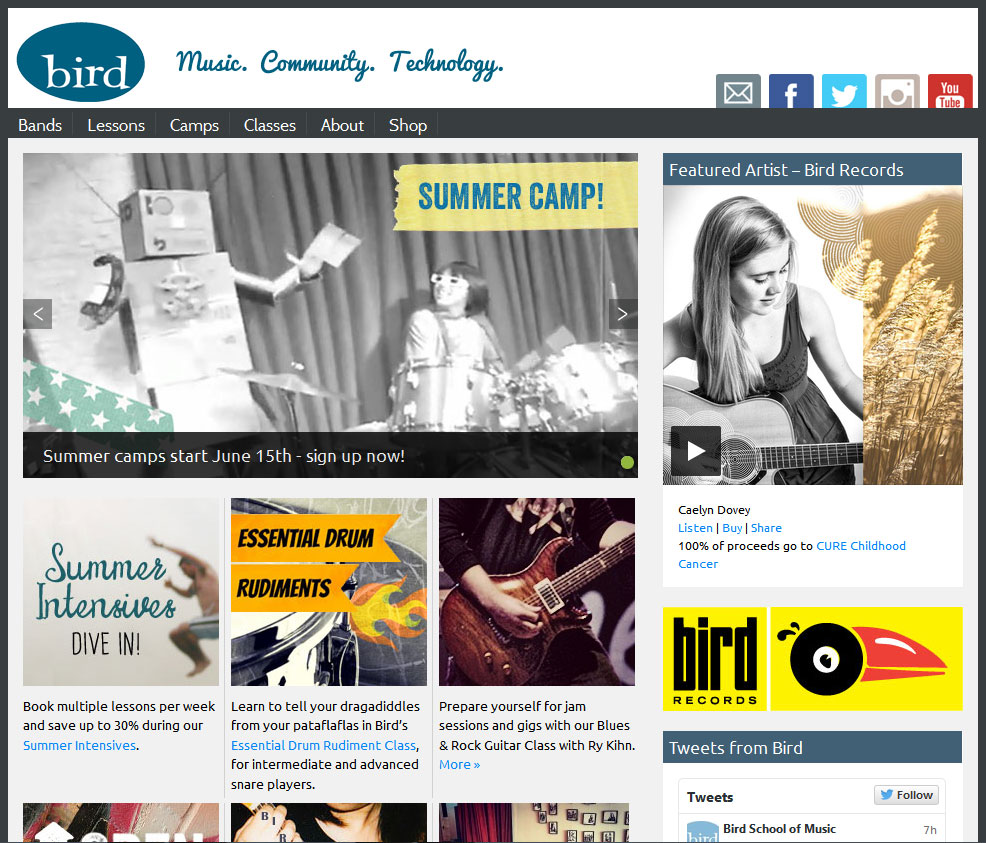 Website design for Bird School by Lellobird