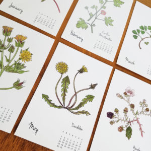 2021 Weeds & Wildflowers calendar by Lellobird