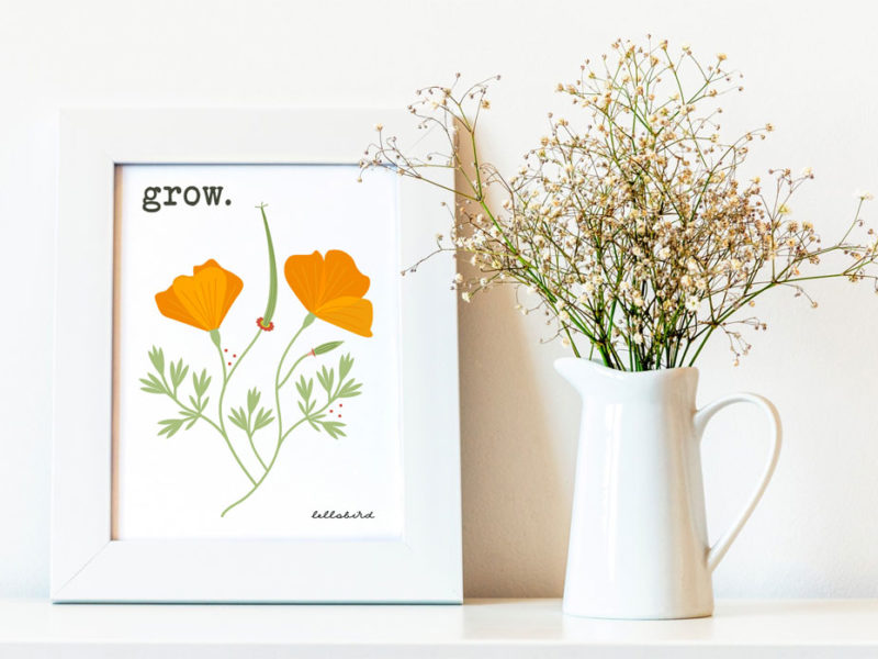 Grow California poppies printable by Lellobird